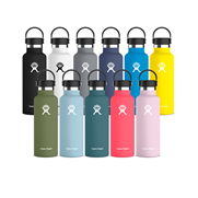 Bouteille isotherme Hydro Flask 0.5L | Hydratation